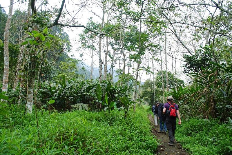 trekking cúc phương